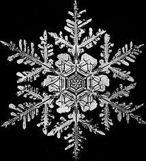 snowflakes thomas