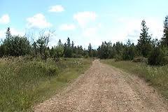 road88888
