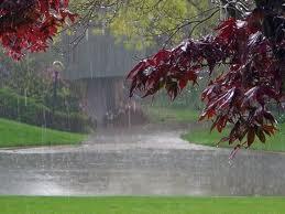 rain222222222