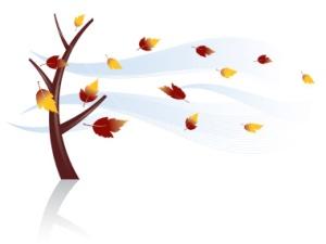 leaves-blowing