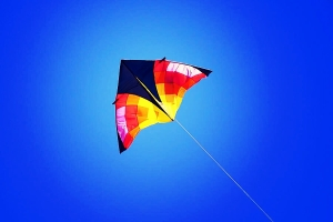 kite-flying-high-in-blue-sky-tracie-kaska