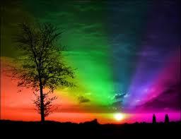 rainbowxxxxxxx