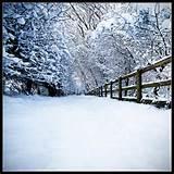 snowwwwwwwwwwwwwwwww