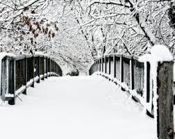 snowwwwwwwwwwwwwwww