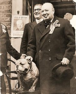 churchill_and_bulldog